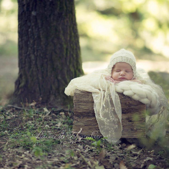 Neonato nel bosco